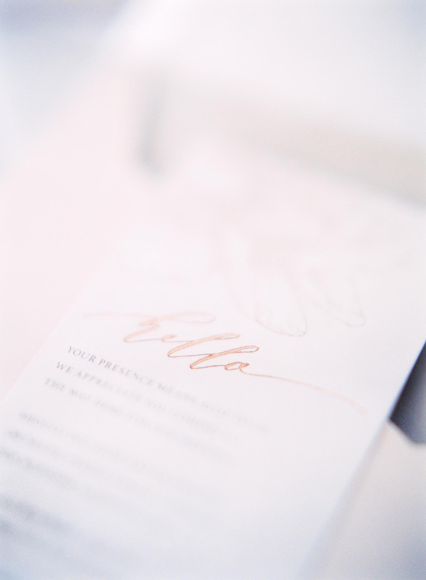 Peony and Lapin Invitation Suite gallery image